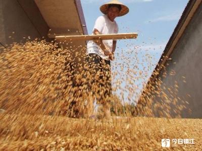"""夏粮总体呈""""一增两减"""" 畜牧生产仍处于调整期"""