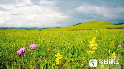 风光旖旎 凉爽怡人 夏天,就该去呼伦贝尔大草原撒个欢