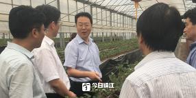 倪斌带队赴丹徒区调研农业农村工作