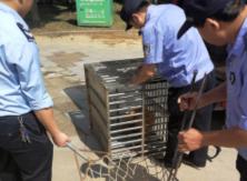 民警进小区抓捕流浪狗