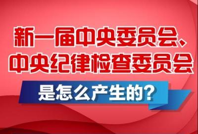 新一届中央委员会、中央纪律检查委员会是怎么产生的?