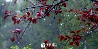 双休日雨水又要来做客了气温依然较为低迷