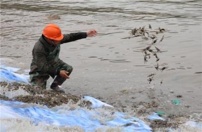 镇江农业部门落实禁渔期渔民生活补贴167万元