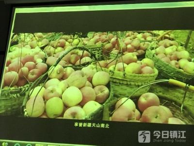 """新疆农四师苹果来镇推介""""吆喝"""",26日起市民可尝鲜"""