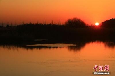 戈壁湿地初冬清晨 一轮红日喷薄而出
