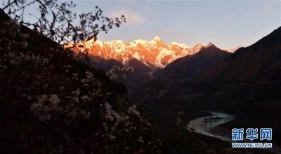美丽的南迦巴瓦峰