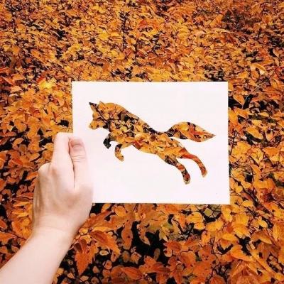 你和自然摄影达人之间,只差薄薄的一张纸