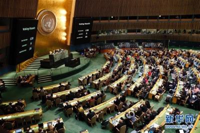 """每年又多一个""""节""""——联合国大会将每年1月24日定为国际教育日"""