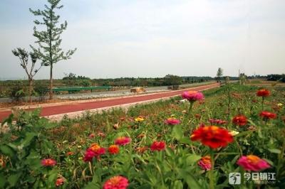 春节镇江接待游客数同比增长11.7% 市人大代表有话说