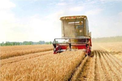 手中有粮,心中不慌!今年我国粮食生产目标:稳定在12000亿斤以上