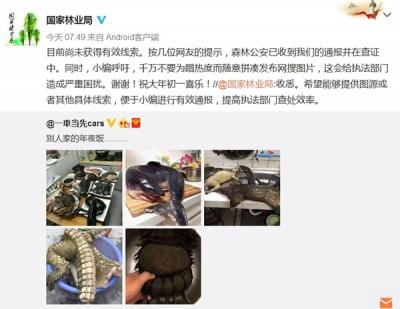 网晒穿山甲熊掌年夜饭引国家林业局行动 网友道歉:是P图