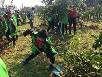"""植树节前一天,绿化办亮出2018年""""成绩单"""":707.4万公顷"""