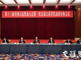 江苏代表团审议监察法草案 实现国家监察全覆盖 深入开展反腐败工作