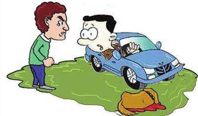 遛狗遛出事故,要了狗命!怪谁?扯皮?狗主人有没有拽紧狗绳很重要