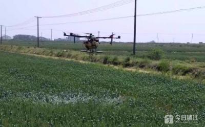 机械植保补贴助农降本增效 无人机、自走式植保机大显神威