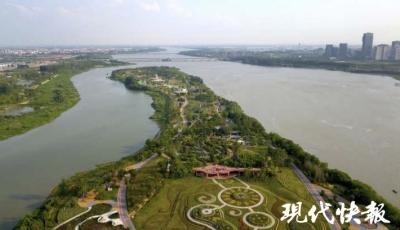 【美丽中国长江行】厉害了!城市最黄金地段不搞开发建公园,珍稀水凤凰也飞来了