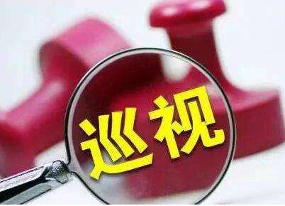 """原汁原味!十三届江苏省委第四轮巡视公布省直单位""""问题清单"""""""