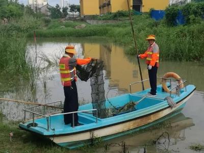 丹阳公园内惊现鱼钩、渔网等捕鱼工具