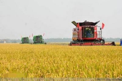 """我国又增加一个节——""""中国农民丰收节""""获批复同意"""