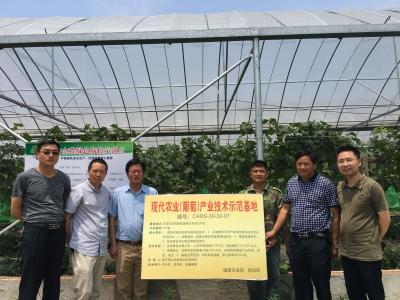 句容首家国家级葡萄产业体系技术示范基地落户白兔