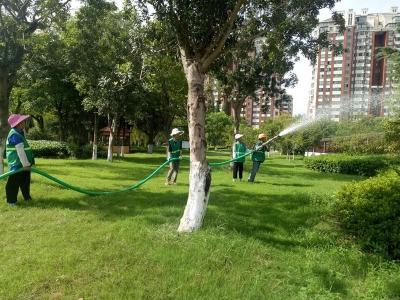"""丹阳对绿化树木""""降温解渴"""""""