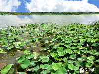 句容赤山湖,一个风景如画的地方