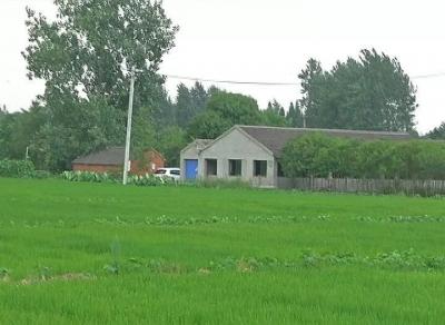 养猪场气味扰民,丹阳丹北镇政府督促整改