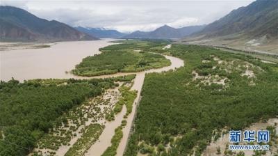 从满眼黄沙到绿树成荫——西藏雅鲁藏布江中游生态建设三记