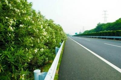 312国道绿色公路项目通过交通运输部考核,节能减排成果显著