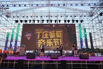 江苏句容:音乐助阵葡萄节