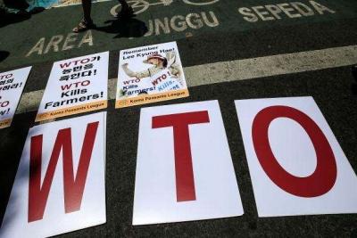 世贸组织总干事:为什么我们比以往更需要WTO?