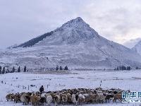 新疆:四季之约