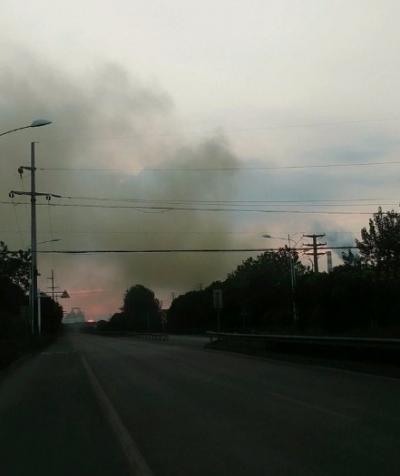 焦化集团排放的气体异味严重,望环保部门检查