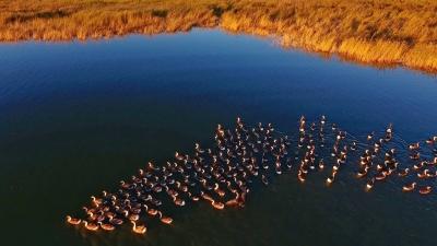 时政新闻眼丨习近平跨省考察第二天 在吉林他专程去看了这个湖