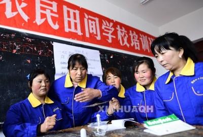 """镇江评选首届""""十佳""""新型职业农民,啥样才能入选?"""