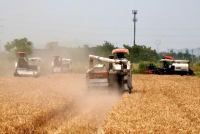 镇江124.1万亩水稻中,已收割41.9万亩,完成进度超三成