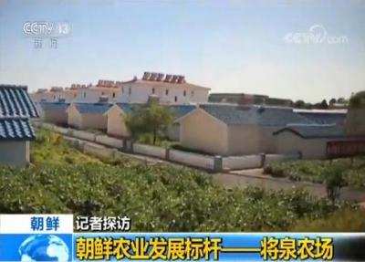 央视记者探访朝鲜农业发展标杆——将泉农场