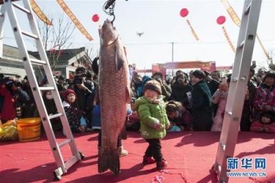 吃货们期待起来——江苏史上最严海洋伏季休渔期结束了