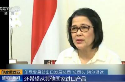 首届中国国际进口博览会为印尼扩大出口提供机遇