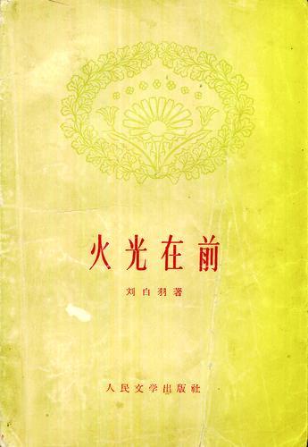 反映渡江战役的小说佳作