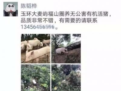 """台州民警遭网友举报""""做微商卖猪肉""""!调查结果来了"""