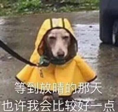 """近期江苏连续阴雨,平均日照不足3小时 太阳一""""偷懒""""流感病人多"""