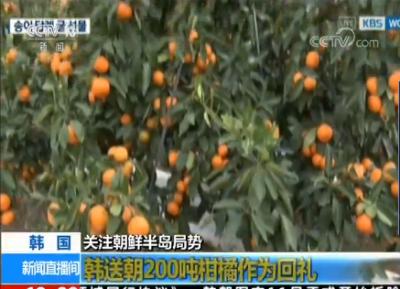 韩送朝200吨柑橘作为回礼 朝曾向韩赠送两吨松茸