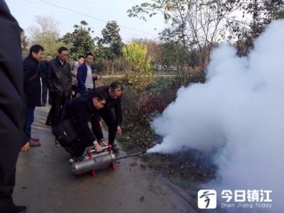 厉害了灭蚁神器!烟雾灌进蚁巢 十多分钟白蚁灰飞烟灭了