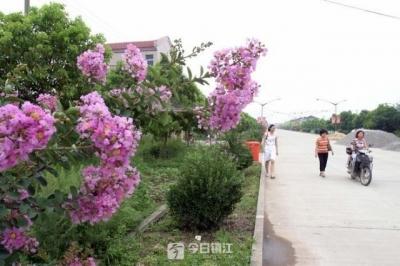 镇江世业镇:身处田园乡村,也可以享受比城市更便捷、更优质的公共服务