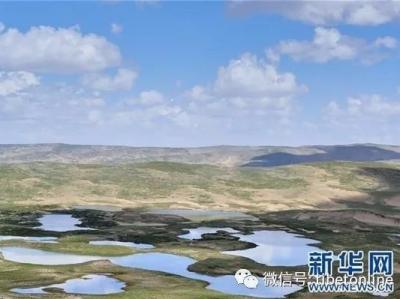 黄河源区湖泊群周边生态得到有效治理恢复