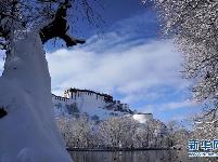 拉萨迎来今冬第一场雪