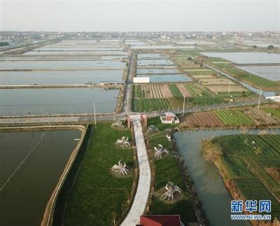 """太湖""""退蟹还湖""""环保升级"""