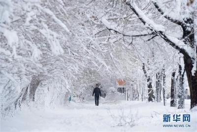 初雪来了!今天夜里沿江苏南局部大雪,中央气象台发布暴雪蓝色预警