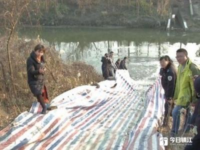85万尾家鱼畅游丹阳水域 提升河道水质